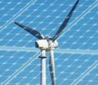 Feeding Renewable Policy
