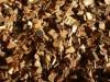 biomass-fuels